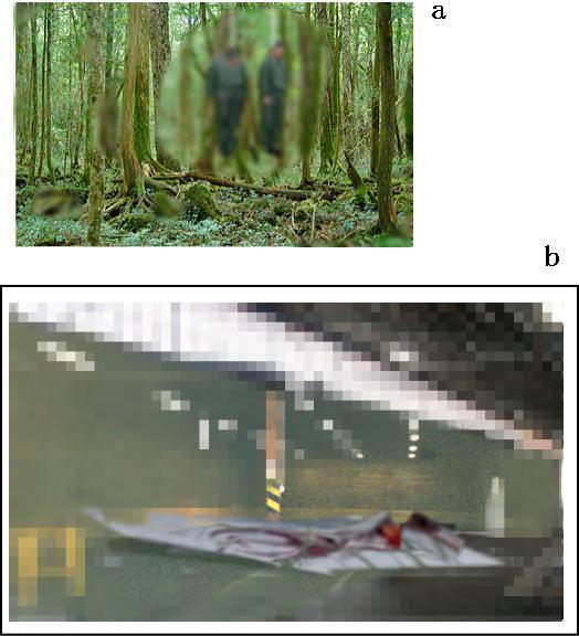 自分も殺されると察したある自衛官は友達に2枚の自殺した同僚の航空自衛官(1986年7月)の現場写真と決定的な証拠写真を託して、その自衛官自身も同僚の死後、2ヵ月