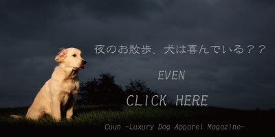 Cuun8月募集/even
