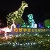夜の動物園★ナイトのげやまの画像