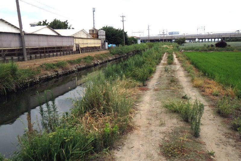 竹腰城/②水路