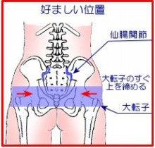 ベルト 位置 骨盤