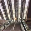 カムバック 大阪の画像