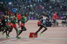 走る能力を運命付ける運動感覚と...