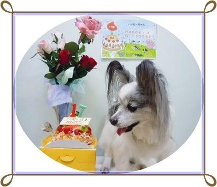 17歳ハッピーの誕生日