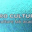 MEGURO CUL…