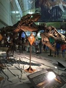 メガ恐竜展2015-3