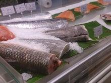 大きい魚の売り方48K
