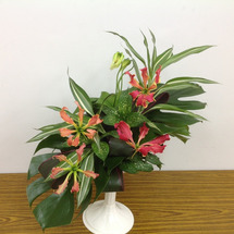 お花の基礎は生花のフ…