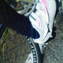 チャリ靴②