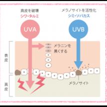 紫外線のアフターケア…