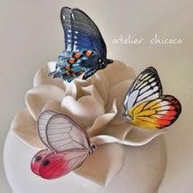 新作!『蝶のピアス』…