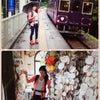 三陸鉄道恋し浜、BRT、ポケモントレインの画像