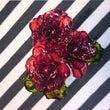 ディップな薔薇