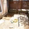 増築・お化粧なおし 亀岡市篠町 Oさま邸 基礎工事始まる・・・の画像