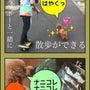 猫と犬の違い〜はじめ…