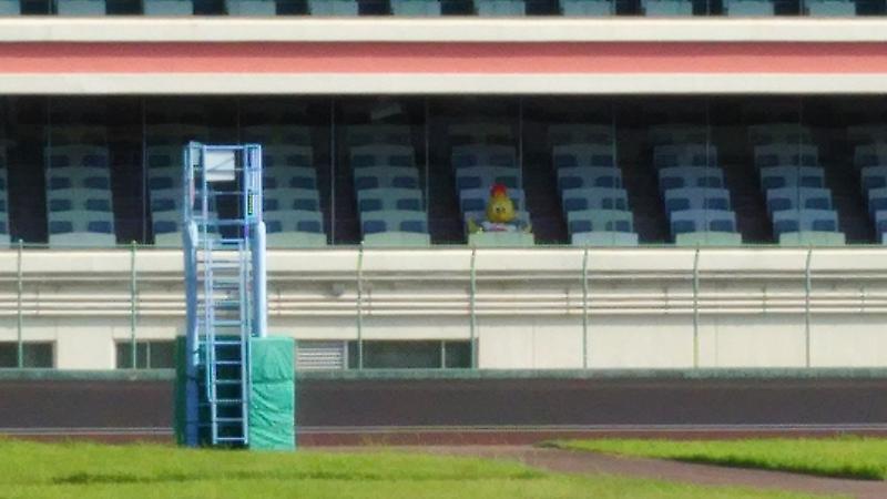 熊本競輪 マスコット