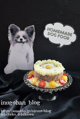 犬 肉 ケーキ 誕生日 パピヨン