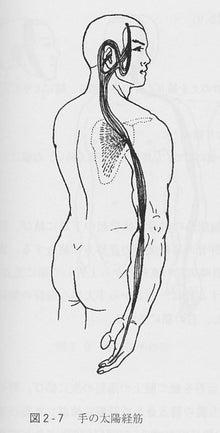 「手の太陽経筋」の画像検索結果