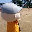 富士ケ丘小学校・関本…
