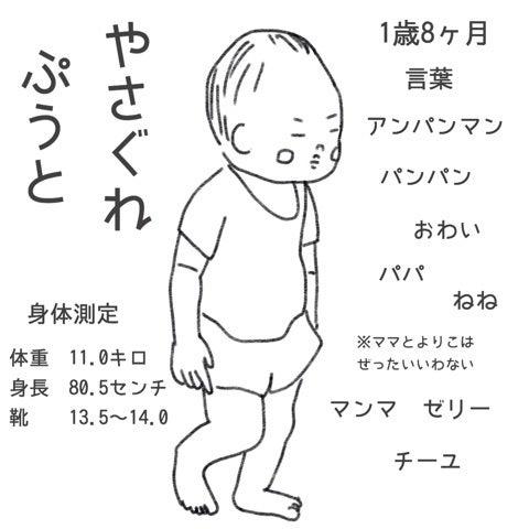 体重 8 1 歳 ヶ月