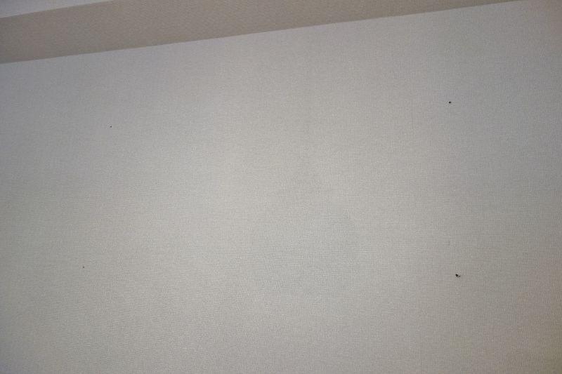 ハンマードリルで壁面に下穴を通す作業