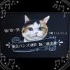 ねこグッズをせっせと作ってます。 10/10〜21 東急ハンズ池袋店 ねこ展に来…の画像