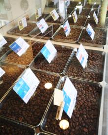 コーヒー豆ショーケース