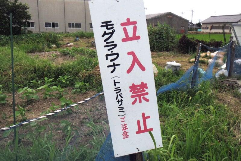 吉藤城/③立入禁止