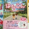 北海道八雲町「はちこん」!の画像