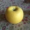 アパート清掃とリンゴとの画像