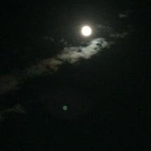 今夜も月が綺麗ですね…