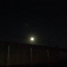 お月様が綺麗なのも