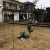 並んで地鎮祭(^^)の画像