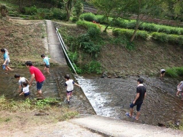 みどり農園川遊び2