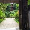 岩船寺(がんせんじ)も素敵でしたの画像