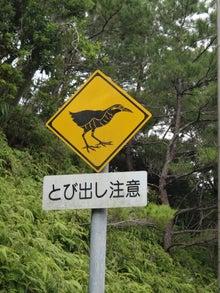 やんばるの標識