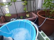 自動給水1