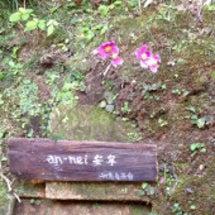 鎌倉・円覚寺のお寺カ…