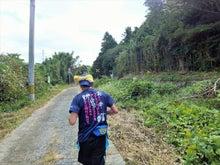 松浦ジョグトリップ 37km