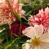 10月・11月【花とアロマの講座お知らせ】の画像