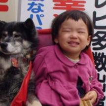 幸せを呼ぶ犬