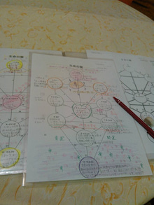 生命の樹の実験