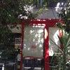「第3回 アマルフィ フェスタ」に出店いたします!の画像