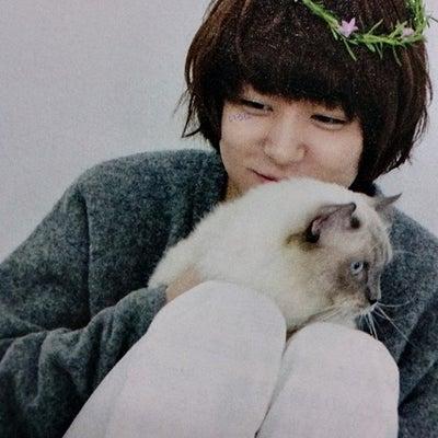2月22日は猫の日ということで伊野尾くんとネコの記事に添付されている画像