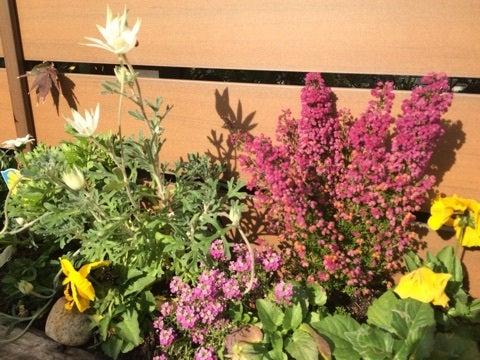 発達障害のお子様がおられるご家庭のお庭づくり@広島の小さなガーデン屋さんの記事より