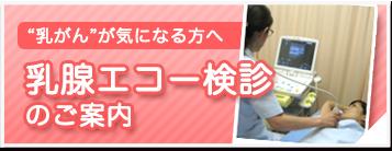 乳腺エコー検診