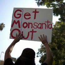 【再掲】85%の生理用品からモンサントの発がん性のある農薬が検出の記事に添付されている画像