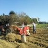 2015年度、大豆の収穫(^o^)の画像