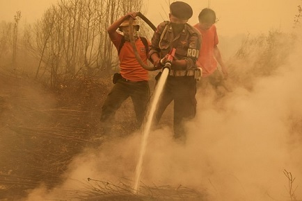 インドネシア森林火災