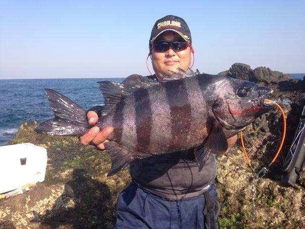 壱岐石鯛6
